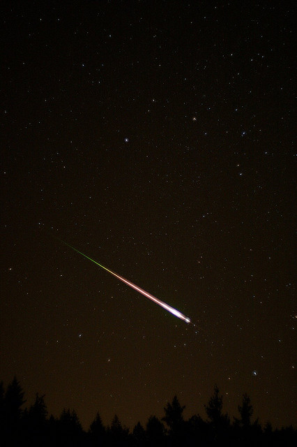 2009 Leonid Meteor by Navicore