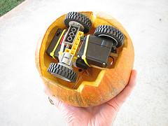 Rovin Pumpkin